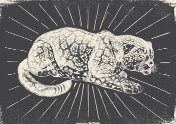Vintage Leopard Illustration - Free vector #418107