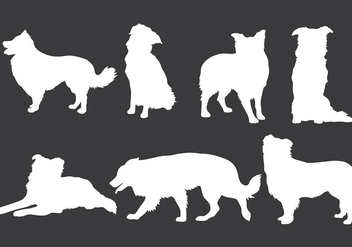 Free Border Collie Icons Vector - Kostenloses vector #418687