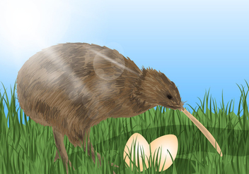 Kiwi Bird With The Eggs - vector gratuit #418857