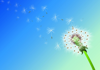 Background Of Dandelion Flowers - vector gratuit #420657