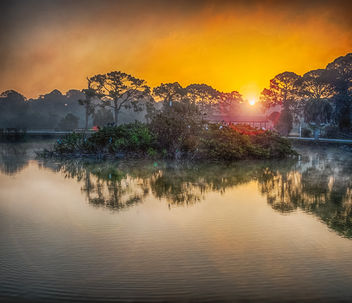 Foggy Sunrise at the Rookery - бесплатный image #421617