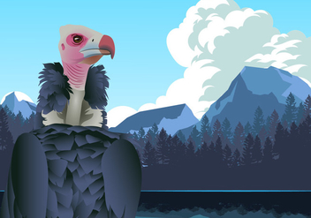Andean Condor in Mountains Vector - Free vector #422047