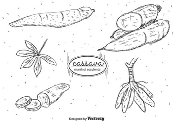 Hand Drawn Cassava Vector Pack - бесплатный vector #424257