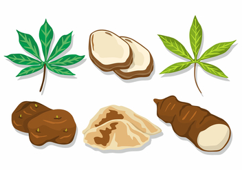 Cassava Vector Set - бесплатный vector #424537