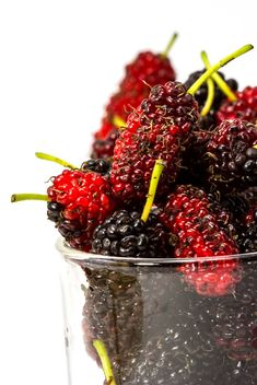 Fresh mulberries in glass - image gratuit #428787