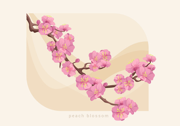 Peach Blossom Vector Illustration - vector gratuit #430447