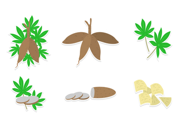 Cassava Vector Set - бесплатный vector #431677