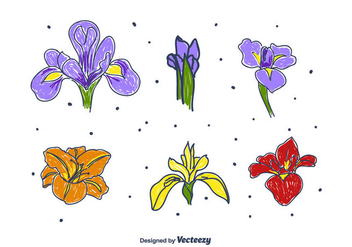 Hand Drawn Iris Flower Set - vector gratuit #433927