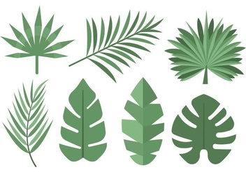 Free Tropical Palm Leaves Vector - бесплатный vector #434637
