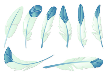 Set Of Pluma Vectors - vector gratuit #435127