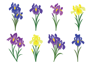 Beautiful Iris Flower Vector Icons - Free vector #435587