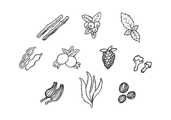Free Herbs For Medicine In Hand Drawn Vector - Kostenloses vector #435747