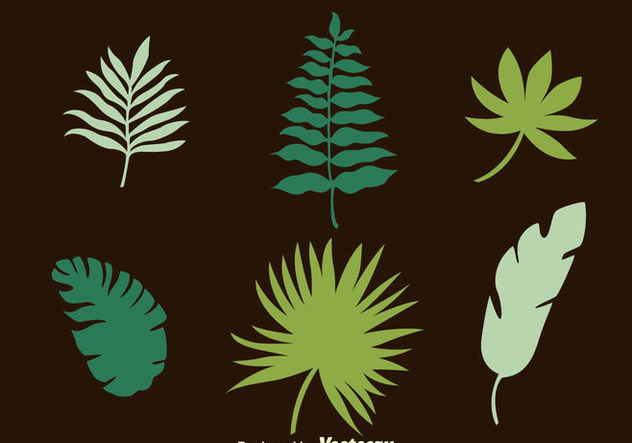Palm Leaf Collection Vectors - бесплатный vector #435917