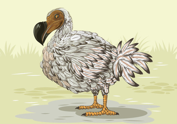 Dodo Bird Side Profile - vector gratuit #438067