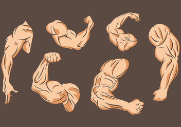 Flexing Vector Icons - Kostenloses vector #438687