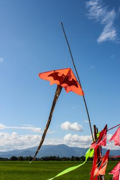 Color kite in the field and blue sky - image gratuit #439137