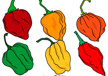 Vector Set Of Habanero Peppers - бесплатный vector #441067