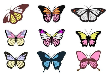 Free Colorful Butterflies Vectors - Kostenloses vector #441427