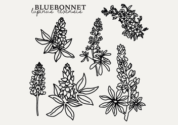 Botanical Bluebonnet - бесплатный vector #444317