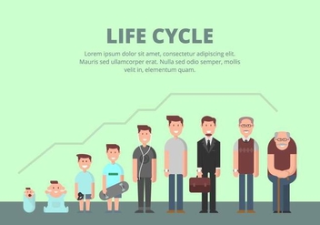 Life Cycle Illustration - Free vector #445327