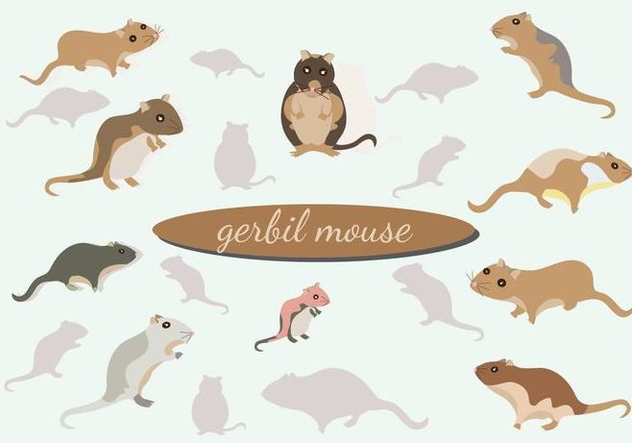 Gerbil Mouse vector Pack - бесплатный vector #446367