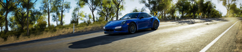 Forza Horizon 3 / Porsche 911 Turbo S Panorama - бесплатный image #447047