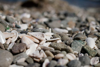 Background with different color sea stones - бесплатный image #448417
