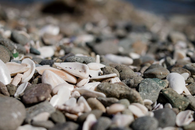 Background with different color sea stones - Free image #448417