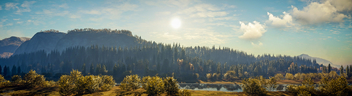 TheHunter: Call of the Wild / A Sunny View - image gratuit #448487