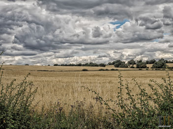 English Summer Skies - Free image #449277