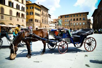 Horse-drawn carriage in Florence - бесплатный image #449557
