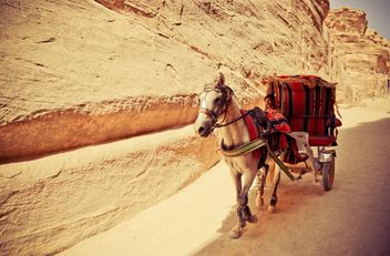 Bedouin carriage in Siq passage to Petra - бесплатный image #449587