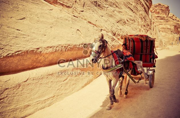 Bedouin carriage in Siq passage to Petra - Kostenloses image #449587