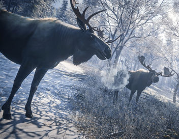TheHunter: Call of the Wild / Welcome to the Moose Meeting - бесплатный image #449947