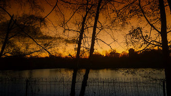 a beautiful evening - image #450407 gratis