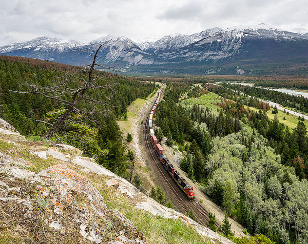 CN, English in Jasper NP from North to South, 11.06.2018 - Free image #454917