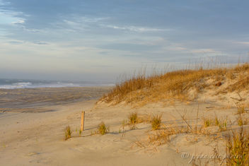 Land and Sea ~ Eastern Seaboard - Free image #454937