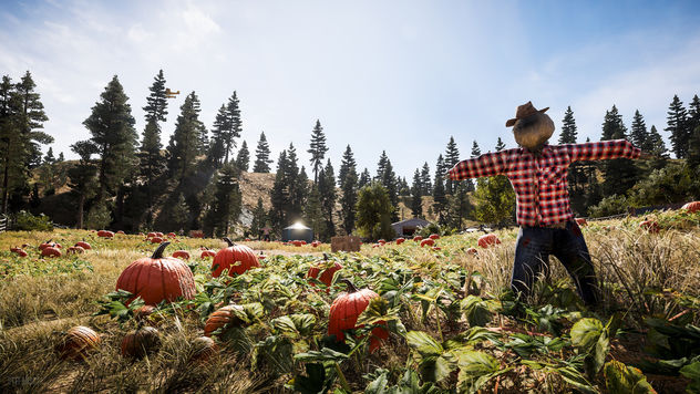 Far Cry 5 / Pumpkin Farm - Free image #454977