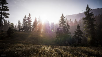 Far Cry 5 / The Hills and the Mountains - Free image #455777