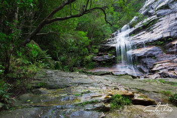 Gordon Falls - Blue Mountains - Free image #456297