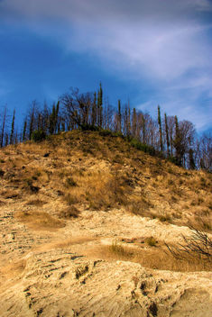 Volcanic ash on a hill - image #457047 gratis