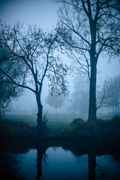 Mysterious morning - image gratuit #457207