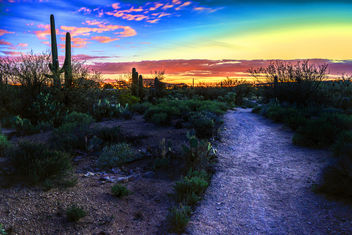 Path to Tucson's light - image gratuit #458897