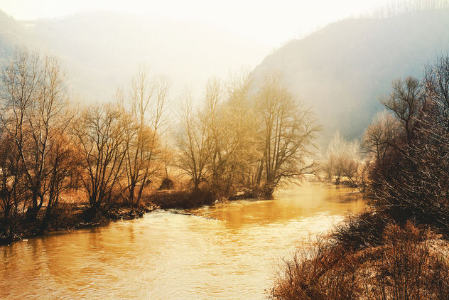 West Morava River - image #459307 gratis