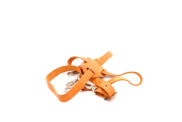 Suspender isolated on white background (Flip 2019) - image gratuit #460267