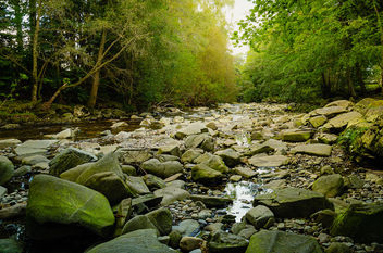 A rocky riverbed in the Highlands of Scotland - Free image #461247