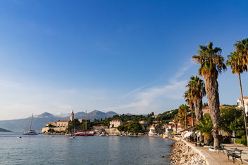 Palm trees on the western coast of Lopud island, Croatia - бесплатный image #463827