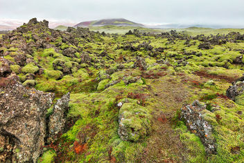 Of Moss, Mist, and Rugged Rocks - Free image #464307