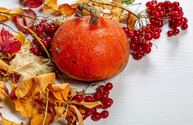 Dry autumn leaves, pumpkin and viburnum berries on white wooden background - image #464507 gratis