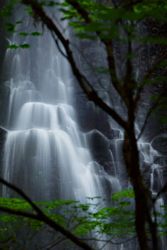 Double Falls - Free image #470827